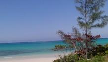 10 Bahamas Grundstücke von 29.000 € bis 700.000 € zu verkaufen