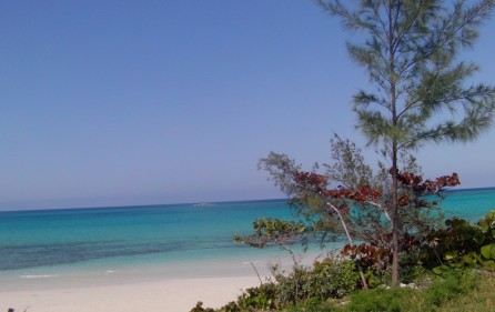 Bahamas Grundstück auf Andros, 11
