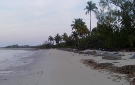 Bahamas Grundstück auf Andros, 10
