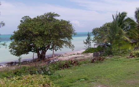 Bahamas Grundstück auf Andros, 3