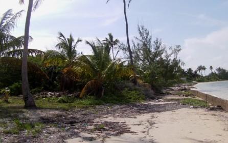 Bahamas Grundstück auf Andros, 2