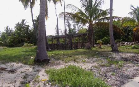 Bahamas Grundstück auf Andros, 1