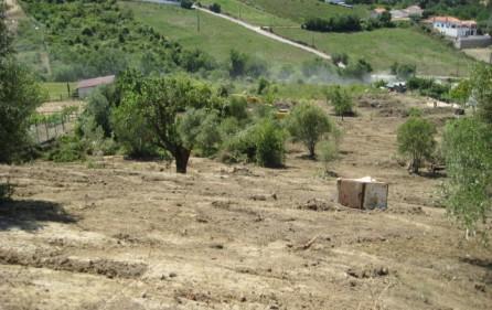 Grundstück Alenquer, Ansicht 10