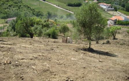 Grundstück Alenquer, Ansicht 11