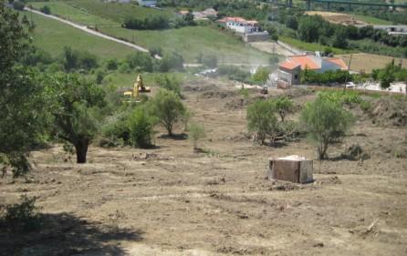 Grundstück Alenquer, Ansicht 12