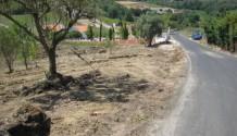 17.000 m² Grundstück in Alenquer, Nähe Lissabon, Portugal - PROVISIONSFREI!