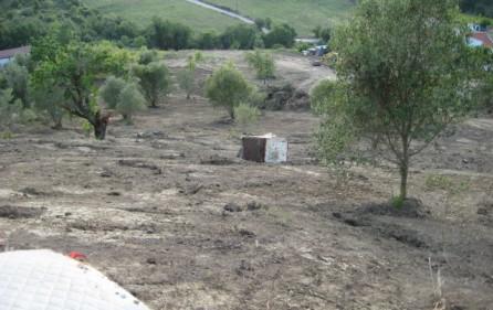 Grundstück Alenquer, Ansicht 21