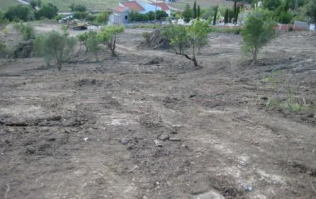 Grundstück Alenquer, Ansicht 22