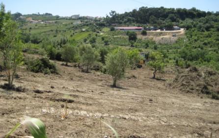 Grundstück Alenquer, Ansicht 3