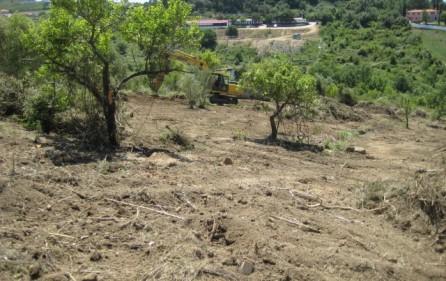 Grundstück Alenquer, Ansicht 4