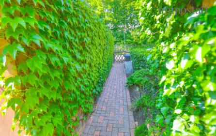 Zugang zum Garten neben der Garage