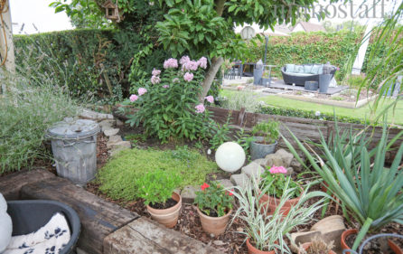 Garten Ansicht 12