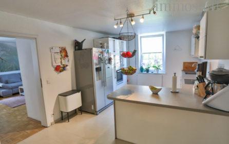 Küche Wohnung Obergschoss Ansicht 2